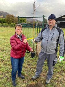 Read more about the article Imker aus unserem Verein pflanzen eine Silberlinde