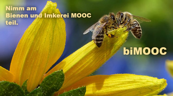 """You are currently viewing Kostenloser Online-Kurs """"Bienen und Imkerei MOOC"""""""